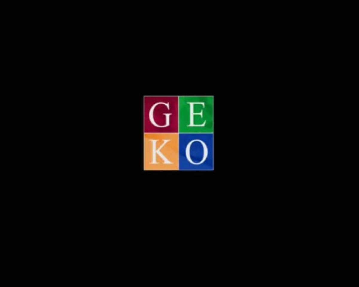 Geko Movie